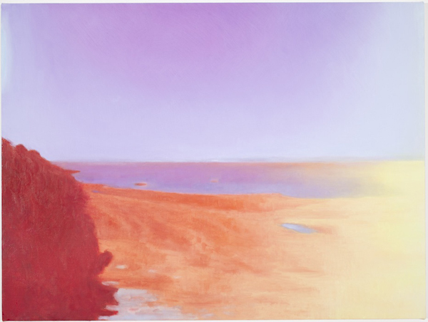 Untitled (113590 rev 2), 2011 oil on linen 21 x 28 inches
