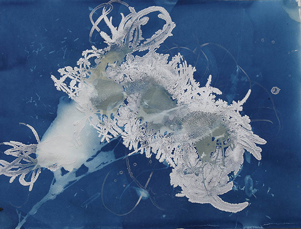 Christine Nguyen Caterpillar Eyes, 2010 cyanotype and salt crystals on paper 15 x 20 inches