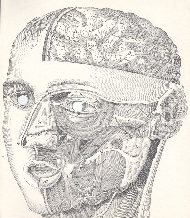 George Maciunas Face Anatomy Mask, 1973 9 3/4 x 8 1/2 inches