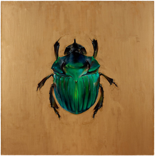 Dung Beetle, 2005 oil and wax on canvas 54 x 54 inches