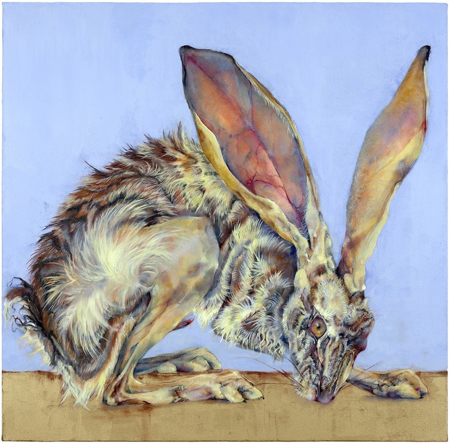 Jackrabbit 4 2008 oil and wax on canvas 30 x 30 inches