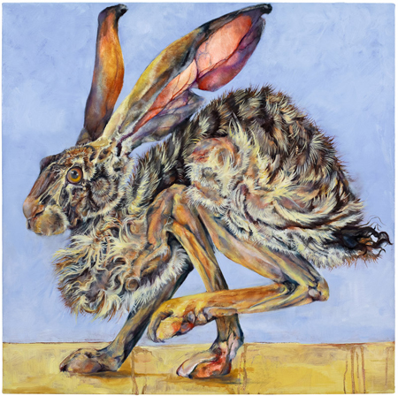 Jackrabbit 5 2009 oil and wax on canvas 30 x 30 inches