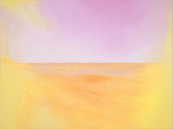 Untitled (Basel lens flare 8017), 2009 oil on canvas 21 x 28 inches