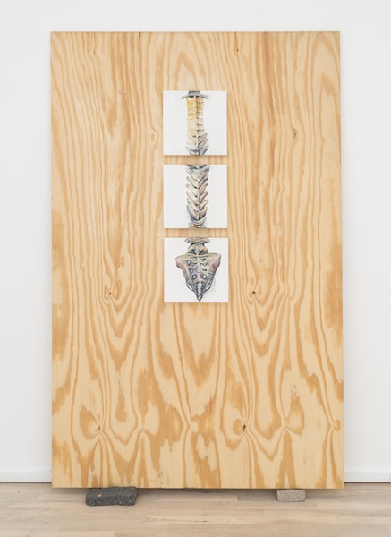 Joianne Bittle Backbone, 2014 oil and charcoal on three panels on plywood 72 x 46 inches